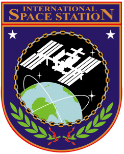 ISS_insignia